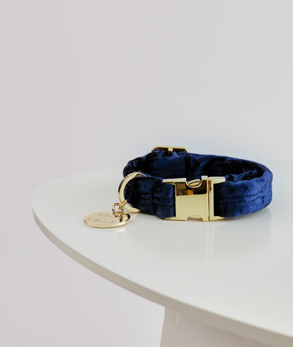 NICE DIGS Velvet dog collar in midnight blue