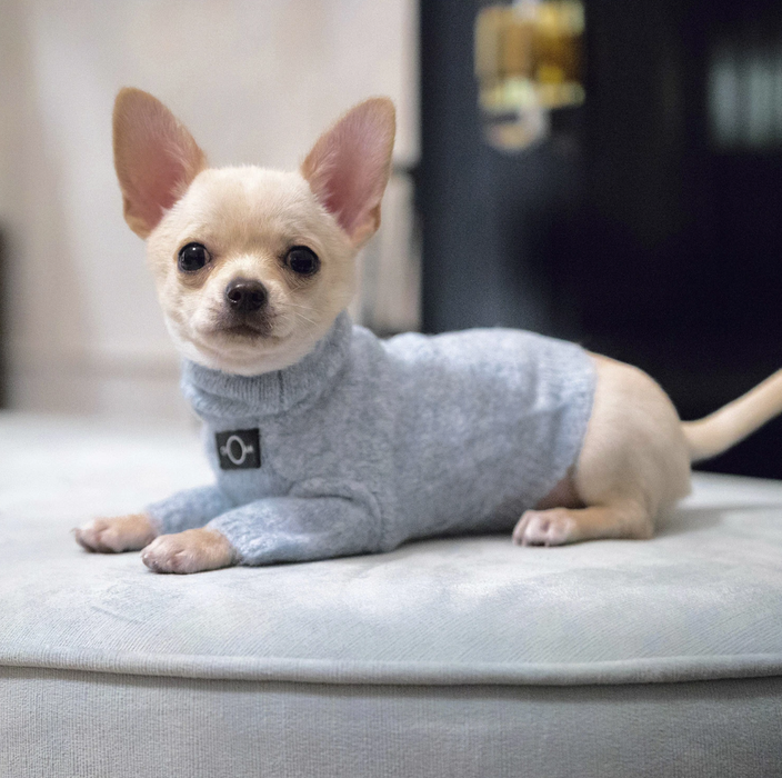 Turtleneck Dog Sweater Blue