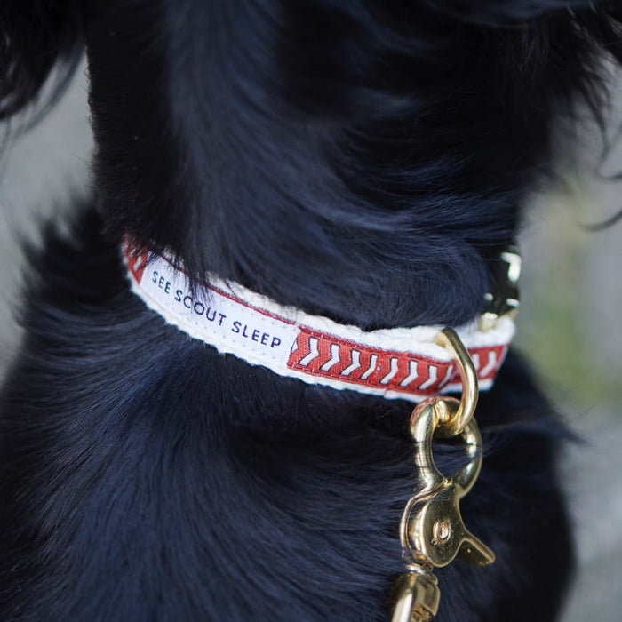 Standard Dog Collar – Chef l'Bark Fire Red, Cream & Black