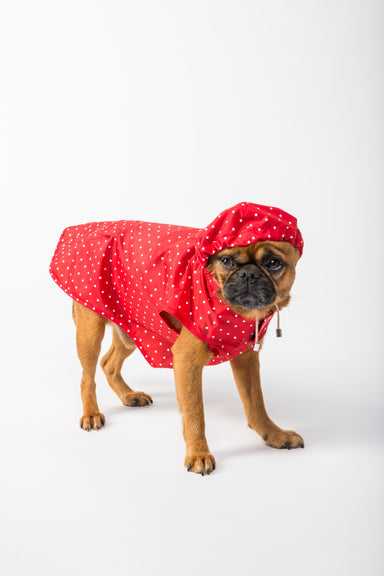 WARE of the DOG Red Polka Dot Anorak Raincoat