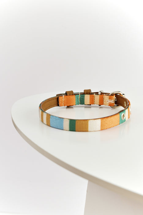WARE of the DOG striped webbing collar