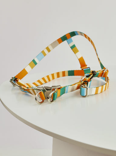WARE of the DOG striped webbing harness