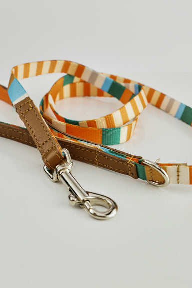 WARE of the DOG striped webbing leash