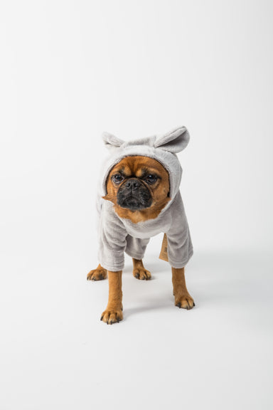FLOUFFY FEEL fleece dog onesie in grey with bunny hoodie