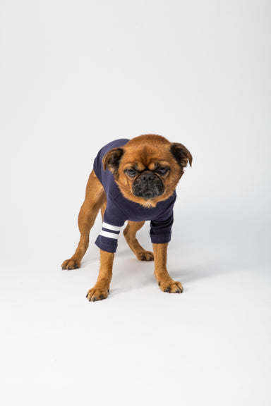 FLOUFFY FEEL soft turtleneck cotton dog shirt in navy blue with stripes