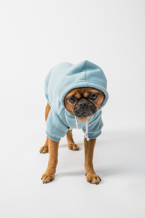 FLOUFFY FEEL oversized dog hoodie in light blue