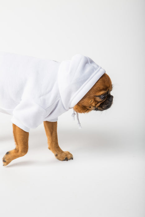 FLOUFFY FEEL oversized dog hoodie in white
