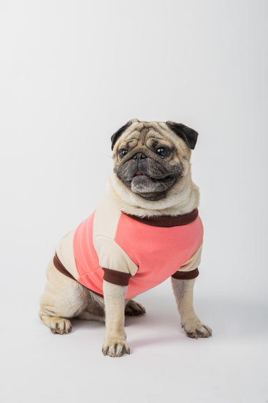 FLOUFFY FEEL cotton dog t-shirt in sand and coral