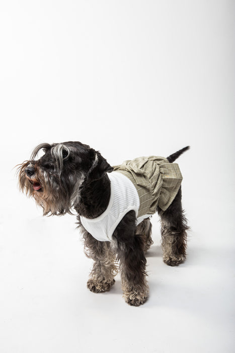 FLOUFFY FEEL ruffle chic dog dress with a bow in sand