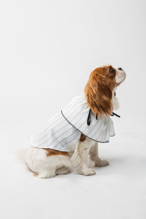FLOUFFY FEEL stripe puff mini smock dog dress