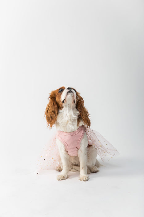 FLOUFFY FEEL princess dog dress pink