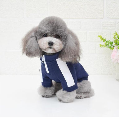 Sport dog sweatshirt in blue