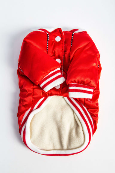 "FLOUFFY FEEL oversized ""Dogbaby"" bomber dog jacket in red"