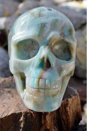 Crystal Wholesale Amazonite Crystal Skull Carving I - Large