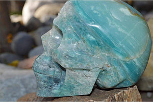 Crystal Wholesale Amazonite Crystal Skull Carving III - Large