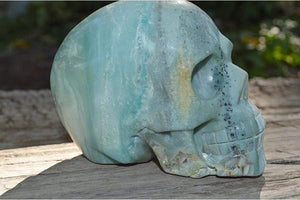 Crystal Wholesale Amazonite Crystal Skull Carving IV - Large