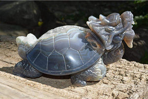 Crystal Wholesale Ancient Dragon Turtle Crystal Carving I - Feng Shui