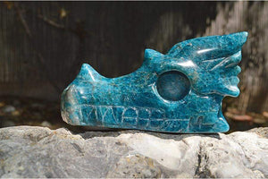 Crystal Wholesale Blue Apatite - Crystal Dragon Skull Carving