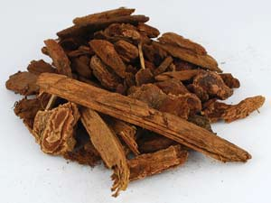 Jezebel Root, pieces 4oz. (Pinus)