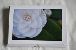 Vancouver Island 'Flowers' Card Set