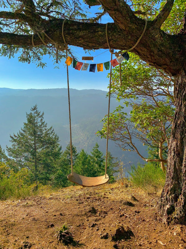Holmes Peak Swing Photography Print