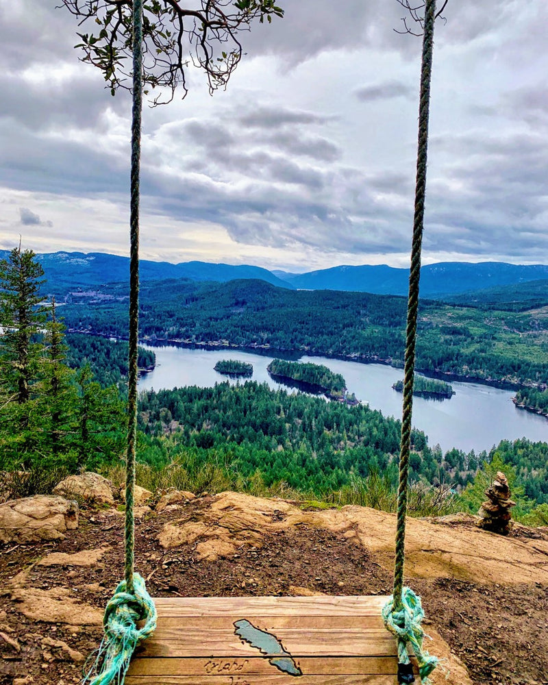 Mountaintop Swing Photography Print