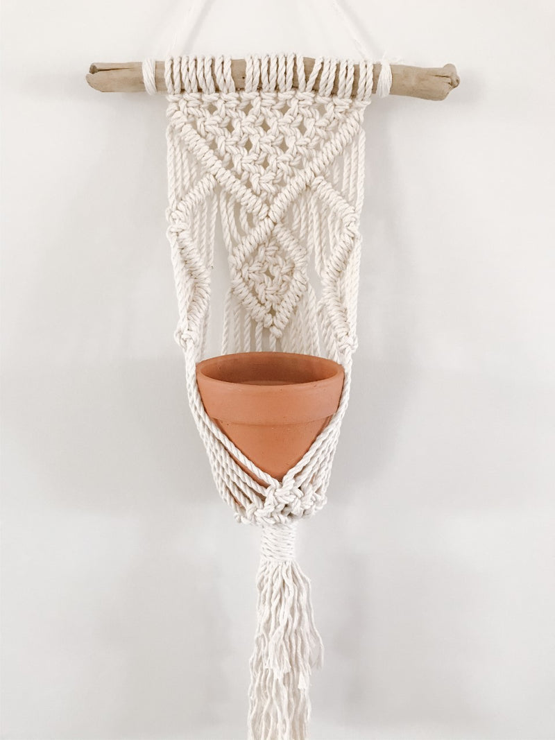 Driftwood Macrame Plant Holder
