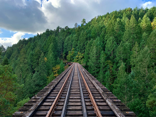 Goldstream Trestle Photography Print