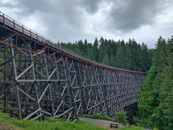 Kinsol Trestle Photography Print