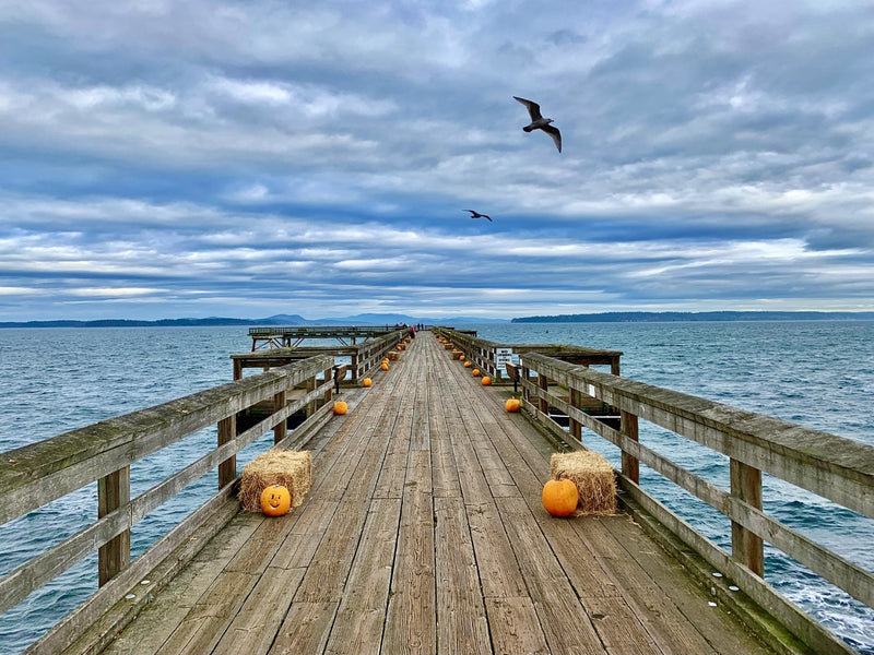 Sidney Pier in the Fall