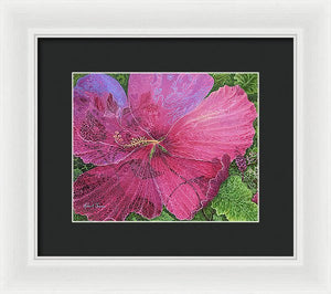 Pink Hibiscus Dream - Framed Print
