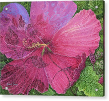 Load image into Gallery viewer, Pink Hibiscus Dream - Acrylic Print