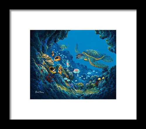Turtle Cove - Framed Print