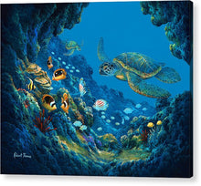 Load image into Gallery viewer, Turtle Cove - Acrylic Print