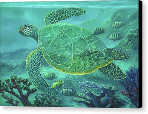 Glass Turtle - Canvas Print