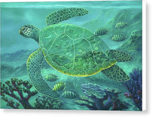 Load image into Gallery viewer, Glass Turtle - Canvas Print