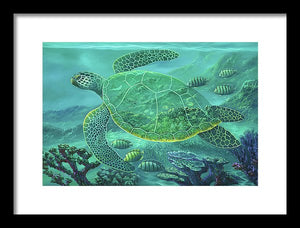 Glass Turtle - Framed Print