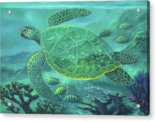 Load image into Gallery viewer, Glass Turtle - Acrylic Print