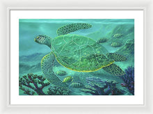Load image into Gallery viewer, Glass Turtle - Framed Print