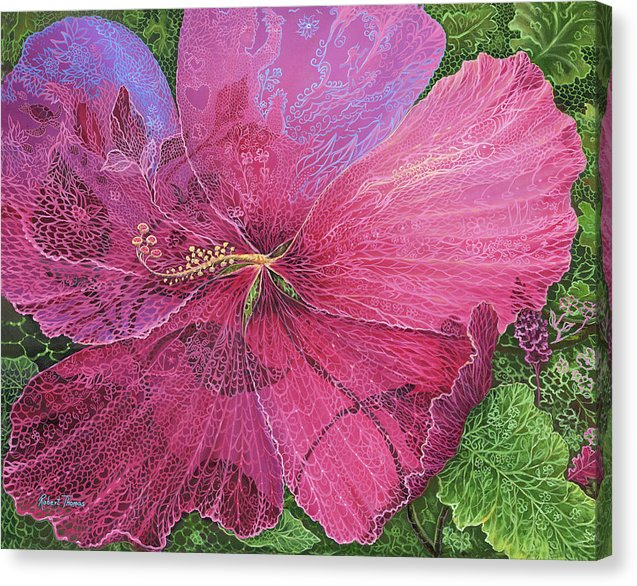 Pink Hibiscus Dream By Robert Thomas - Canvas Print