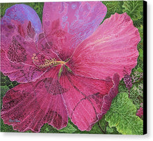 Load image into Gallery viewer, Pink Hibiscus Dream By Robert Thomas - Canvas Print