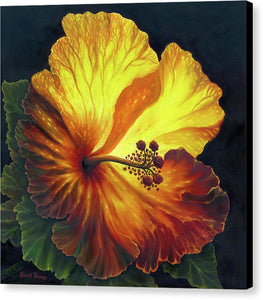 Yellow Hibiscus - Canvas Print