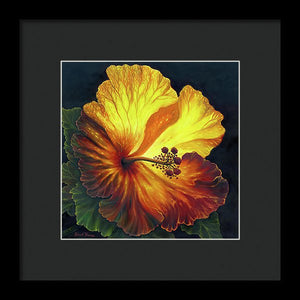 Yellow Hibiscus - Framed Print