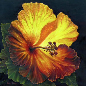 Yellow Hibiscus - Art Print