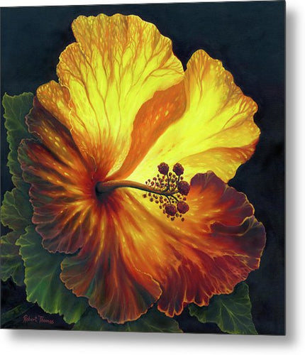 Yellow Hibiscus - Metal Print