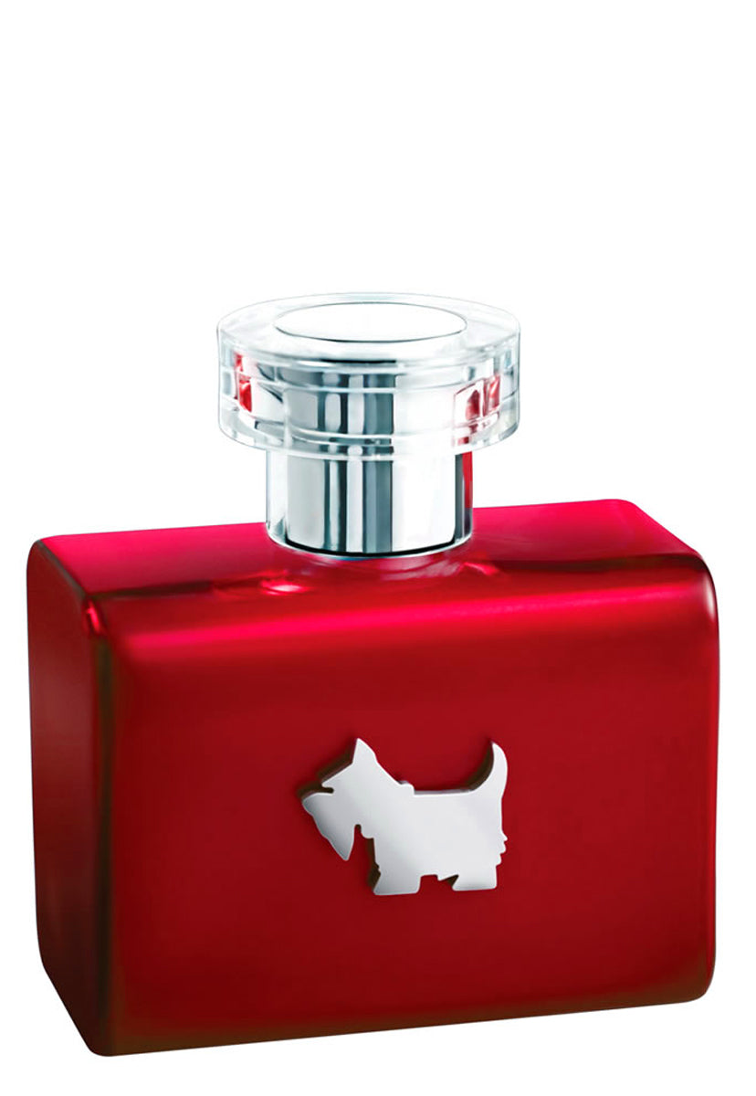 Ferrioni Red Terrier 100 ml EDT Spray - Ferrioni