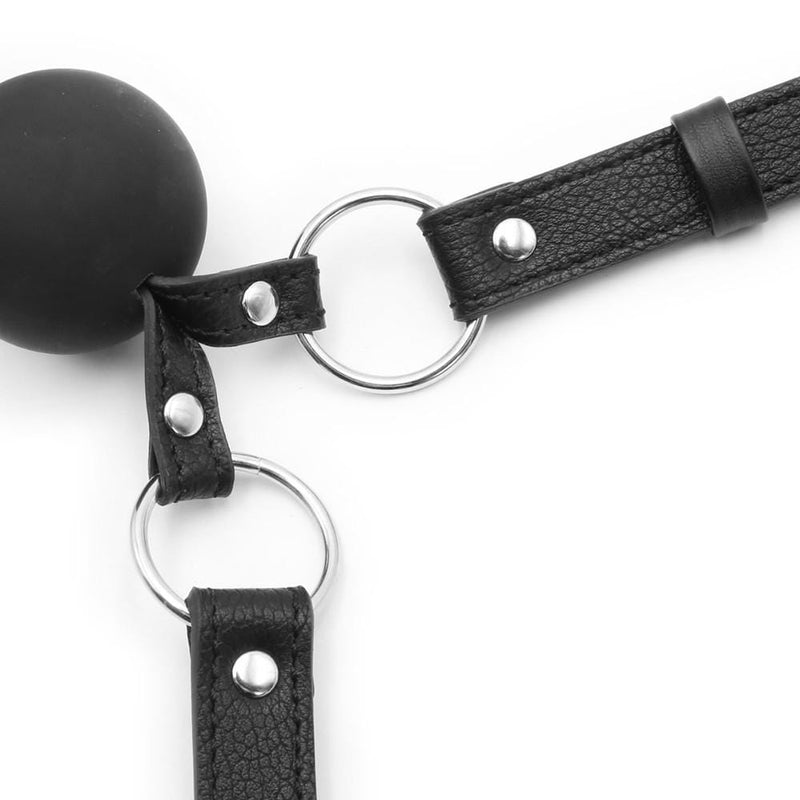 Lovers Ball Gag