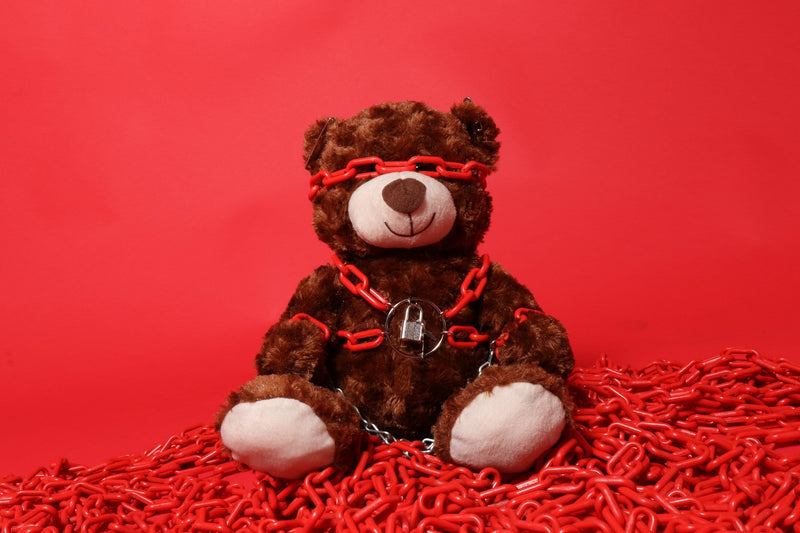 Fred the Red Bondage Bear