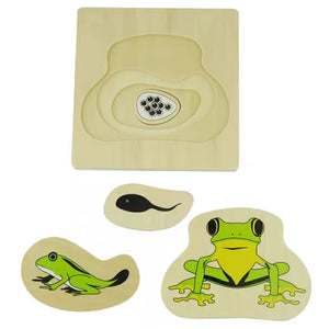 [Ready Stock] Montessori Nesting Life Cycle Puzzle (Frog)
