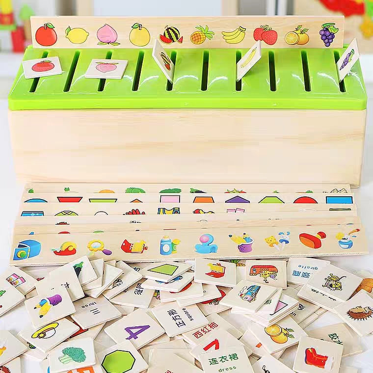 [Ready Stock] Montessori Classification Box